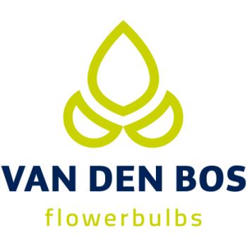 Van Den Bos Logo