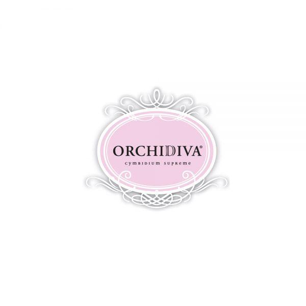 OrchiDiva – Marktonderzoek