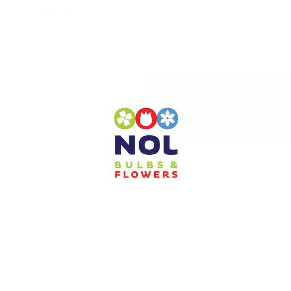 Nol Bulbs & Flowers – Coaching
